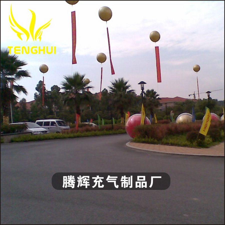 腾辉气球 飞翔全球